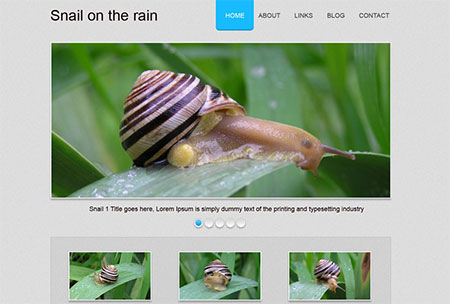 responsive templates free download
