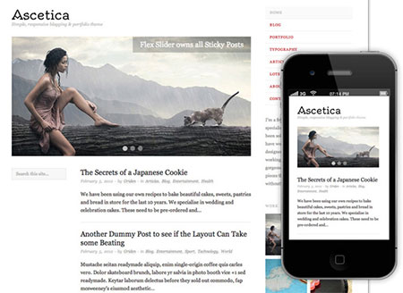 responsive blog themes free download