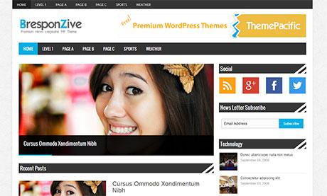 free responsive wordpress blog