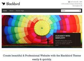 free wordpress responsive theme