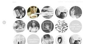 responsive wordpress portfolio theme