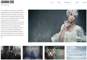 free photographer wordpress theme